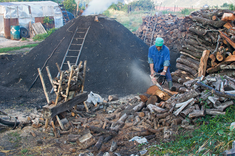 Preparando leña  - Oficio de carbonero - Bakartxo Aniz - Fotografías sobre el oficio de Carbonero - Valle de Lana.