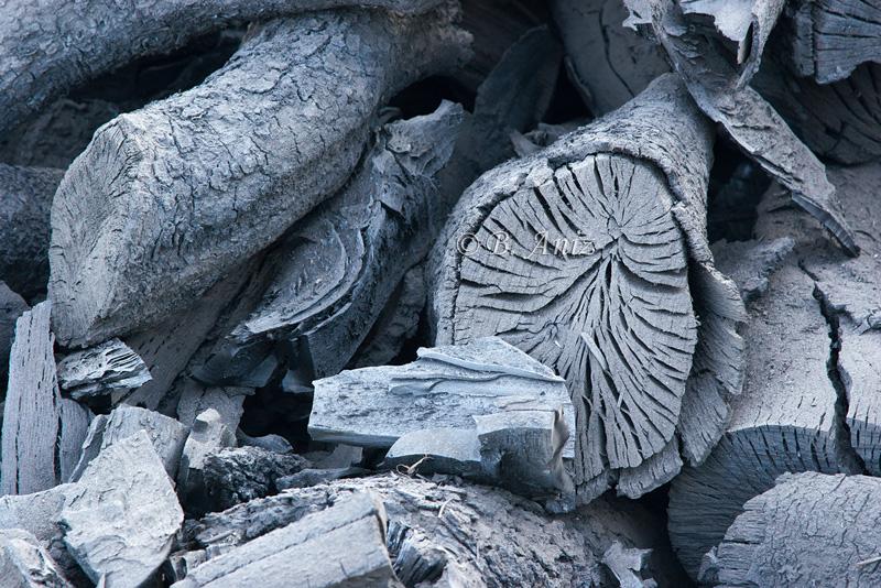 Carbón - Oficio de carbonero - Bakartxo Aniz - Fotografías sobre el oficio de Carbonero - Valle de Lana.