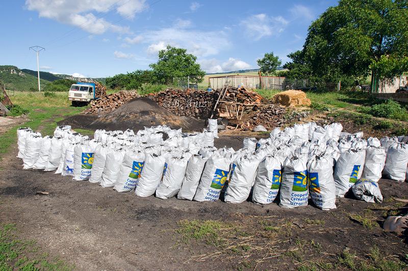 Carbón guardado en sacos - Oficio de carbonero - Bakartxo Aniz - Fotografías sobre el oficio de Carbonero - Valle de Lana.