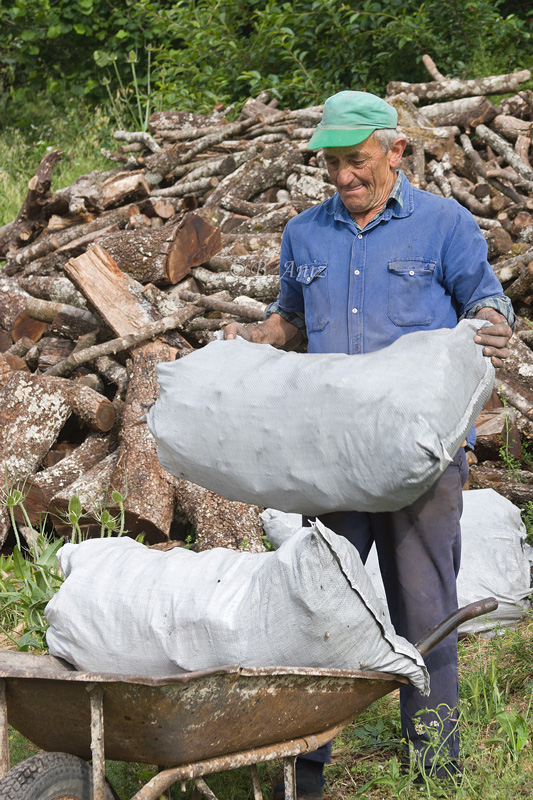 Recogiendo los sacos - Oficio de carbonero - Bakartxo Aniz - Fotografías sobre el oficio de Carbonero - Valle de Lana.