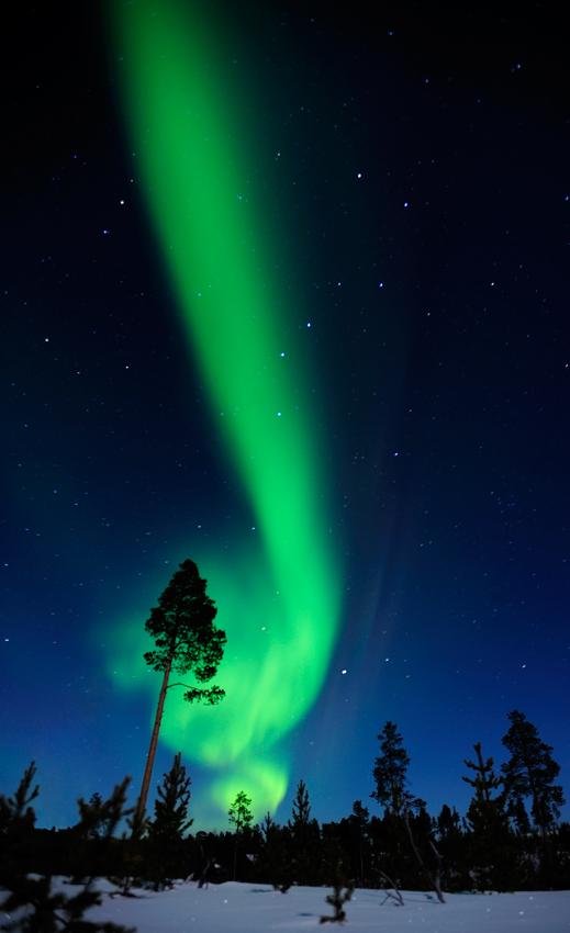 Aurora borealis - Conversaciones privadas con la Naturaleza - Daniel Montero , Fotografía