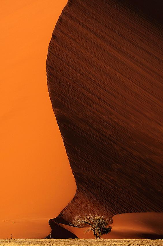 Namib - Conversaciones privadas con la Naturaleza - Daniel Montero , Fotografía