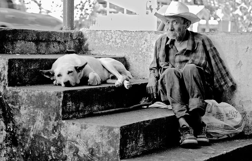 Viejo amigo - Historias nunca contadas - Daniel Montero , Fotografía