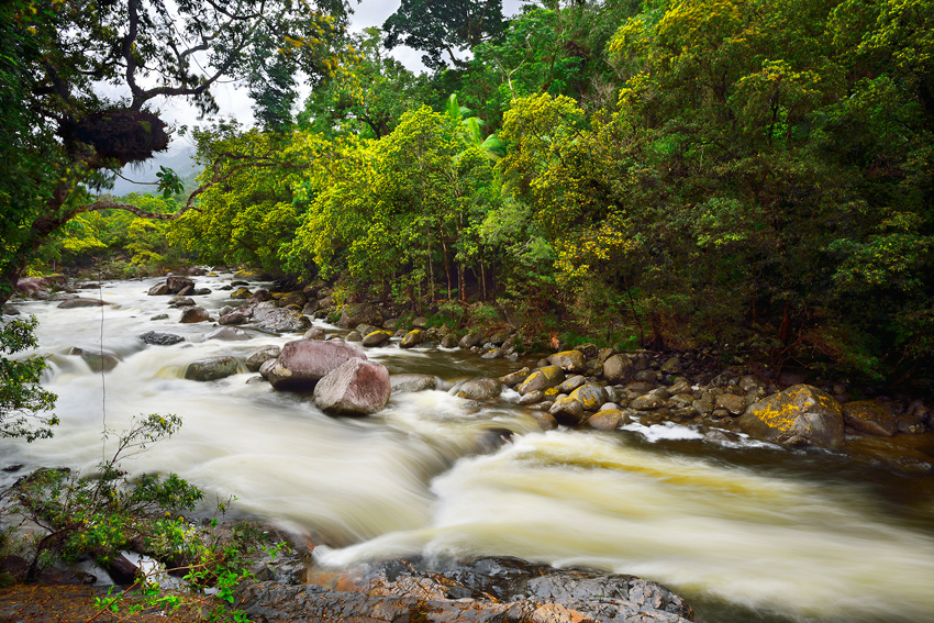 Mossman Gorge, QLD - El reino Ocre: Territorio del Norte y Queensland, Australia - Daniel Montero , Fotografía