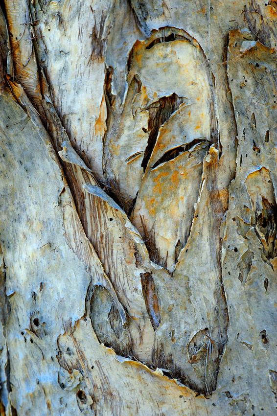 Ochre I - El reino Ocre: Territorio del Norte y Queensland, Australia - Daniel Montero , Fotografía