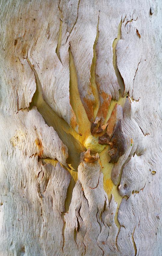 Hidden Secrets - El reino Ocre: Territorio del Norte y Queensland, Australia - Daniel Montero , Fotografía