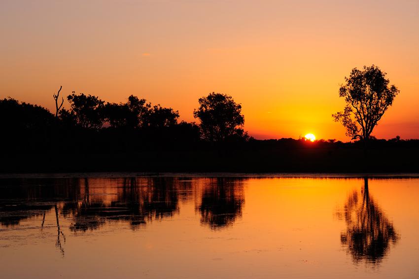 Yellow Water, Kakadu, NT - El reino Ocre: Territorio del Norte y Queensland, Australia - Daniel Montero , Fotografía