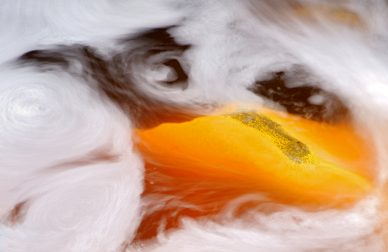 La mirada oculta - Daniel Montero , Fotografía