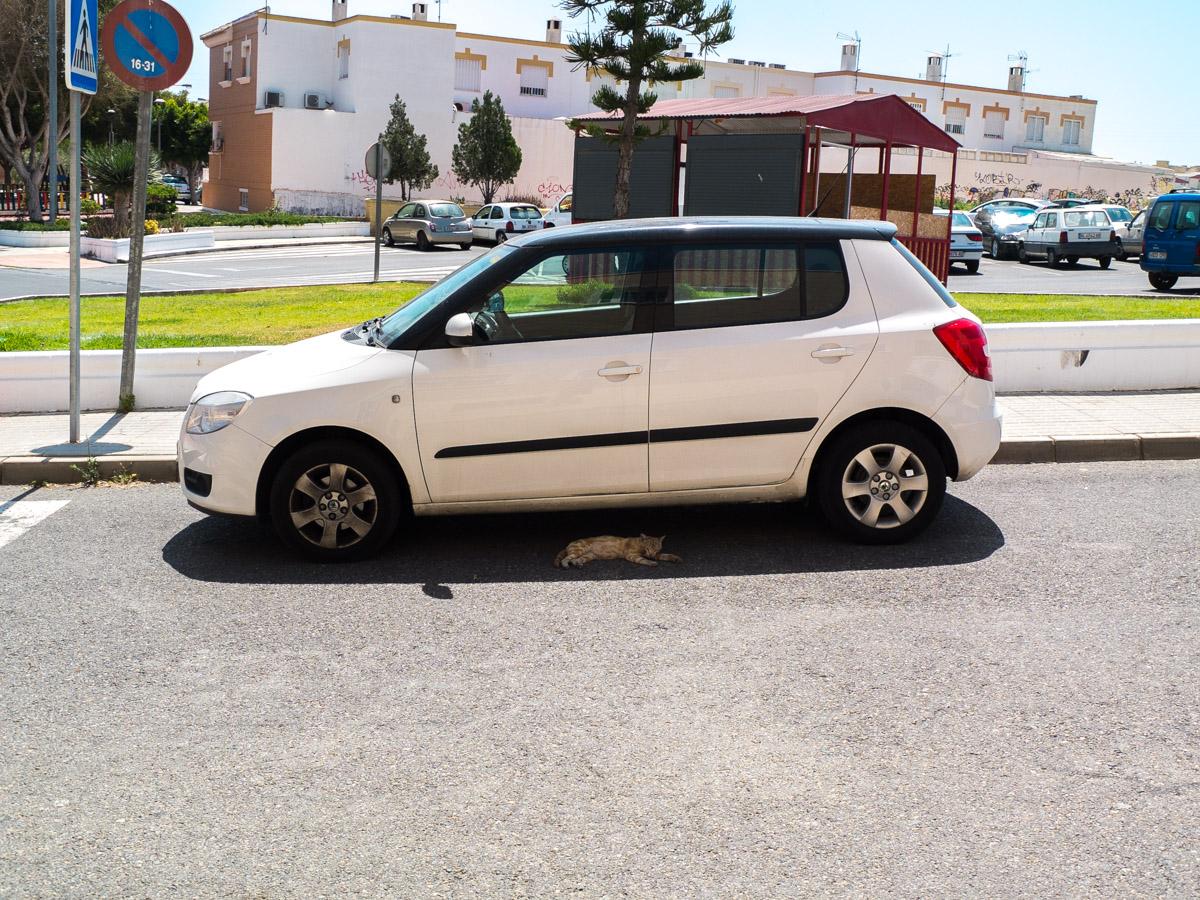 Junio 2016, La Fuensanta, Huercal de Almería - TOP MENSUAL - davidortega, fotografía