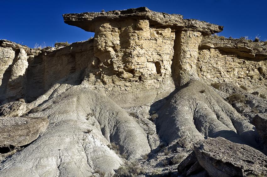 torreon del desierto - tierra Natural - Exposicion Tierra natural