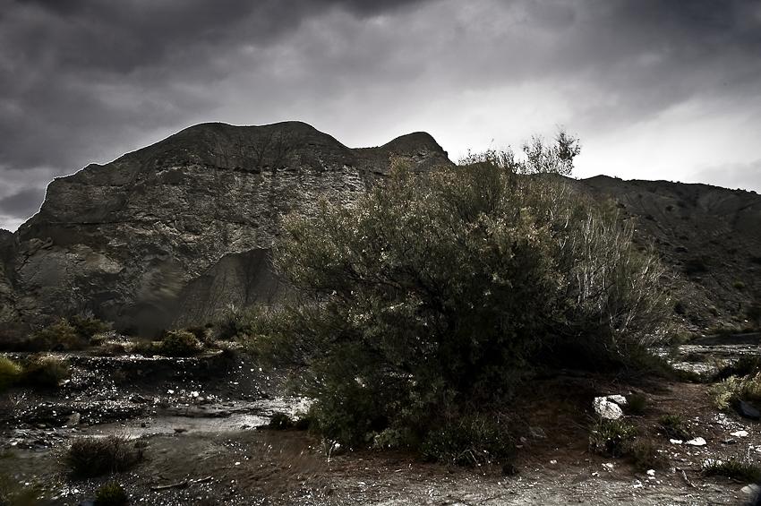 desierto bajo el agua - tierra Natural - Exposicion Tierra natural