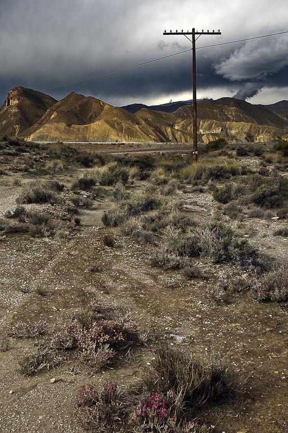 luz en el desierto - tierra Natural - Exposicion Tierra natural