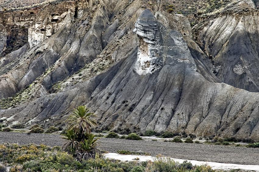 observando a la morsa - tierra Natural - Exposicion Tierra natural