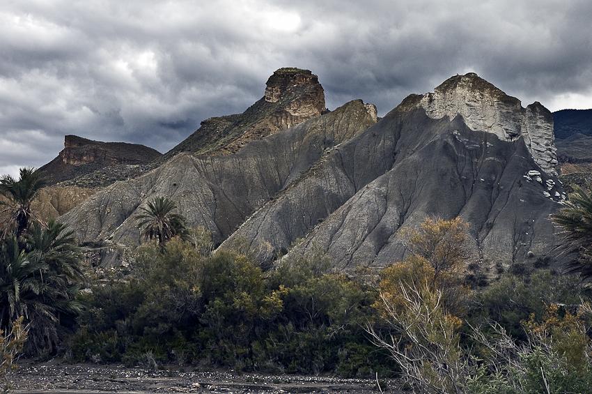 humedal en el desierto - tierra Natural - Exposicion Tierra natural