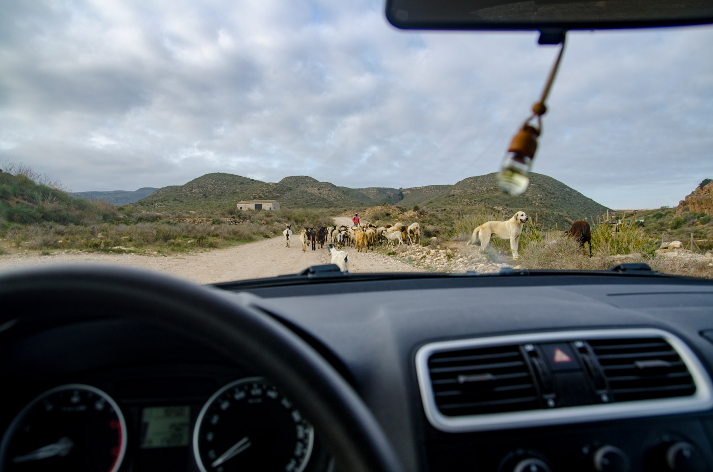 La Nómada Ventana Indiscreta - davidortega, fotografía