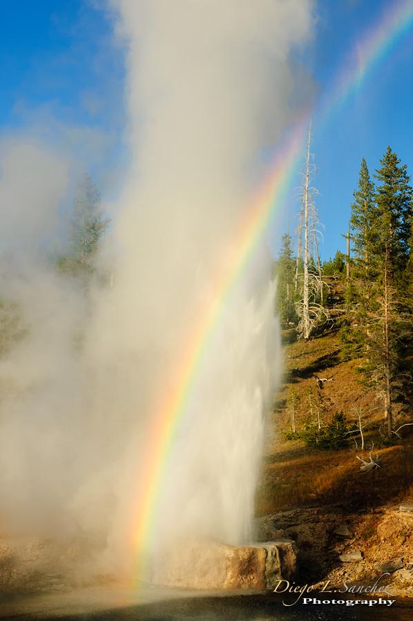 Yellowstone & Grand Teton - Yellowstone & Grand Teton National Parks