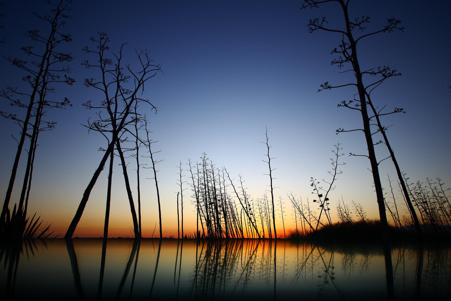 PITAS - David Santiago, Landscape Photography