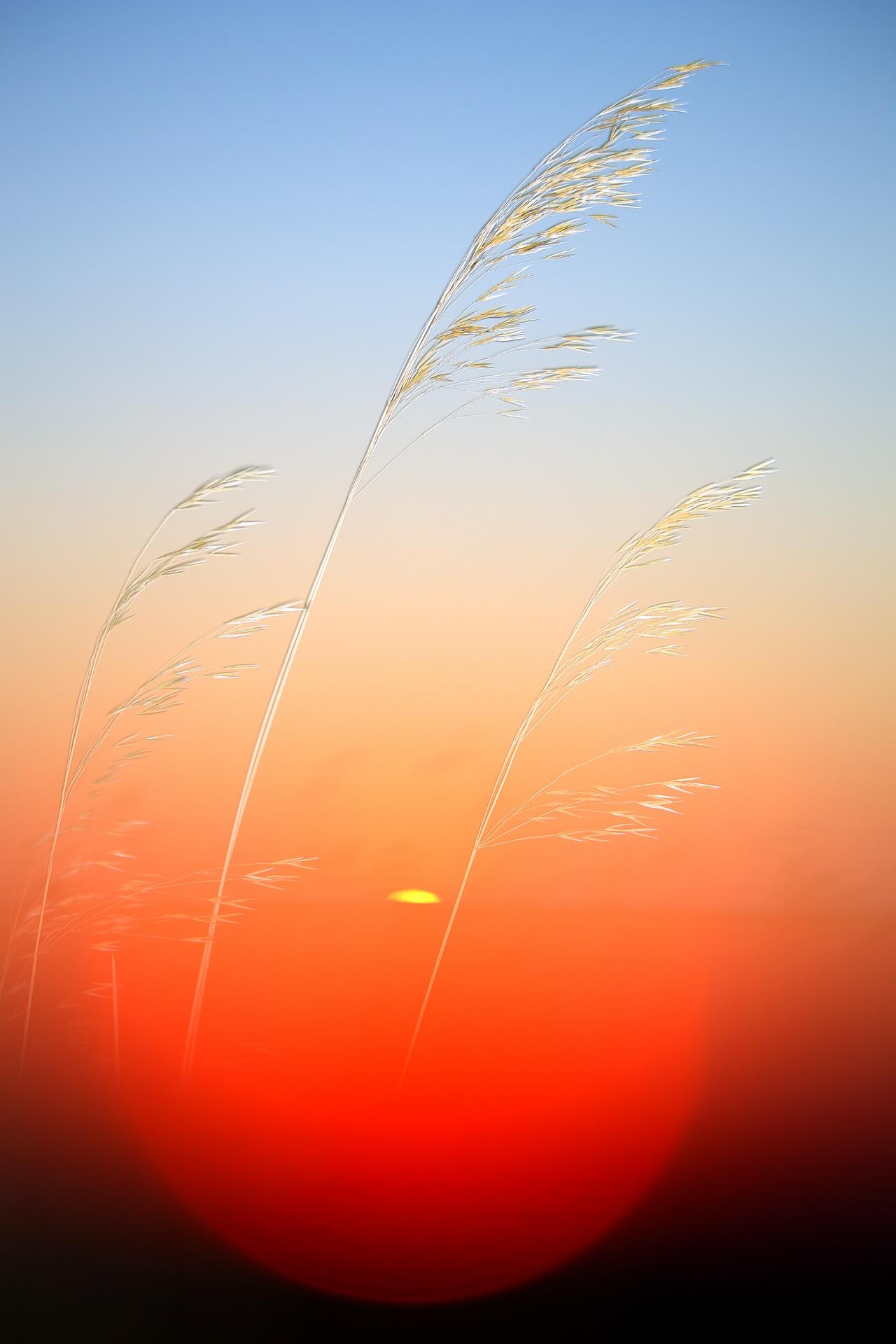 JOPOS - David Santiago, Landscape Photography