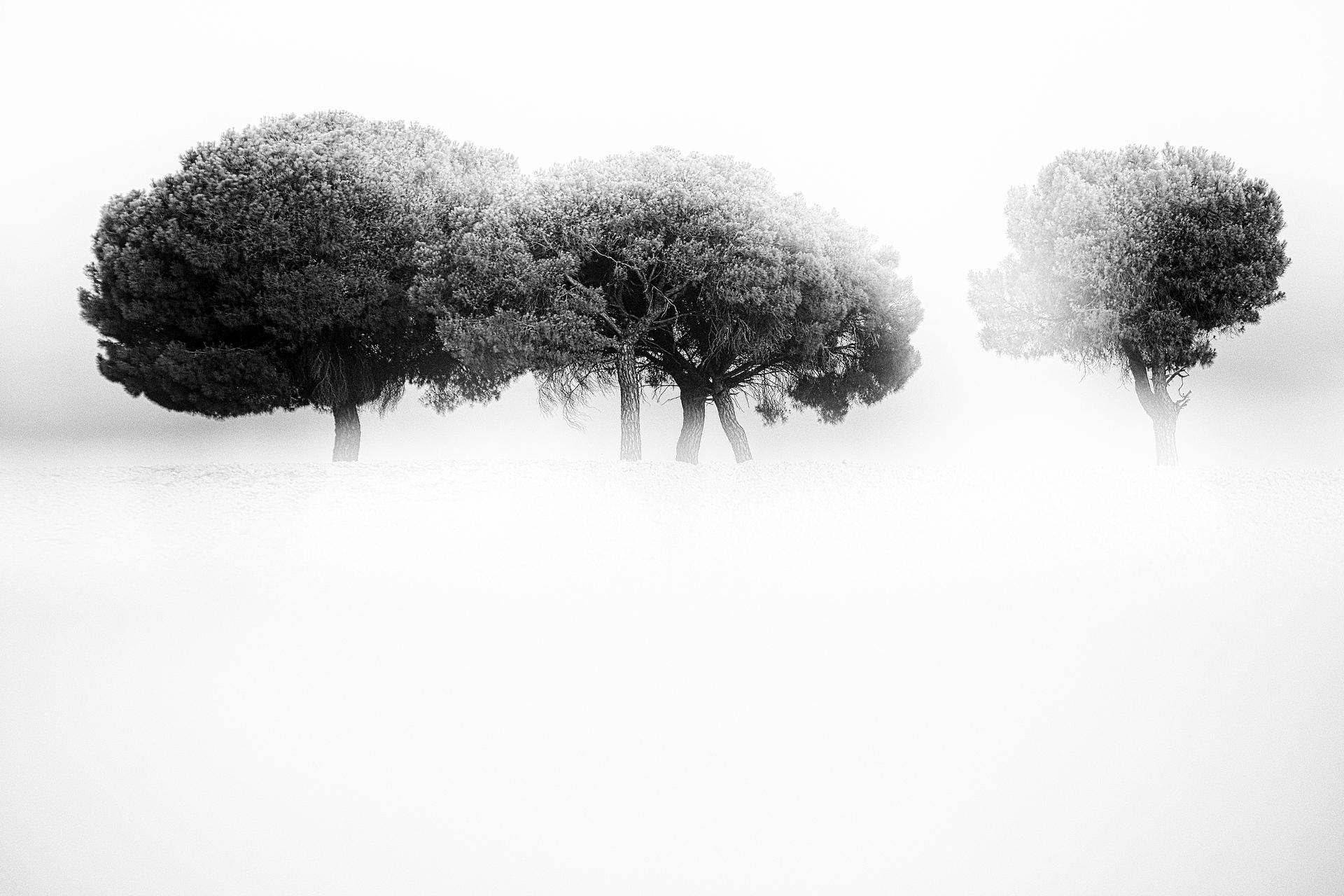 13 - David Santiago, Landscape Photography