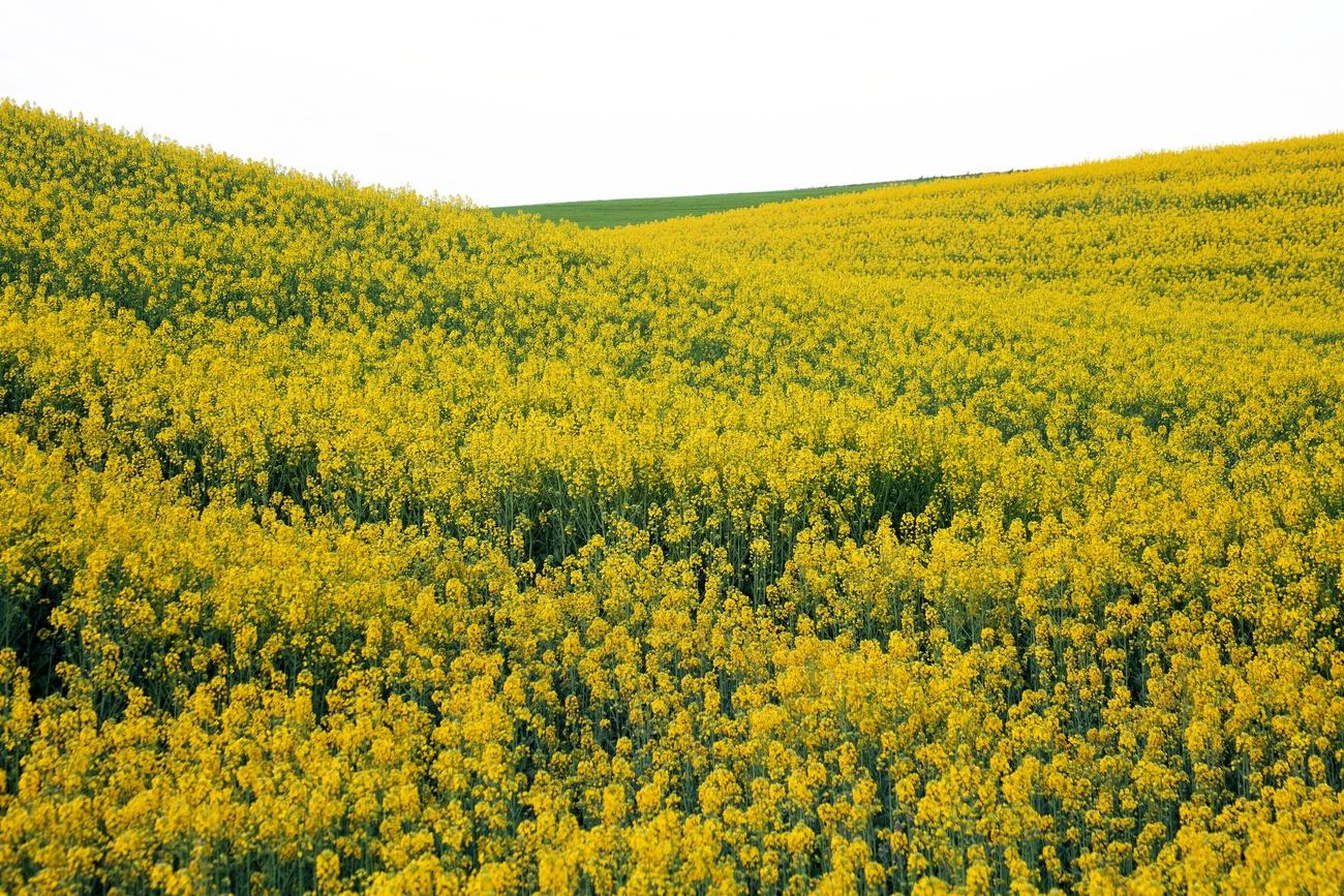 FORMAS ABSTRACTAS - David Santiago, Landscape Photography