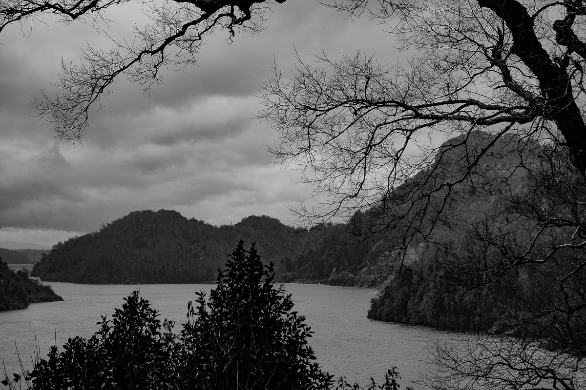 Lago Panguipulli. - Huilo Huilo - Eduardo Cerda-Sánchez, Fotografia