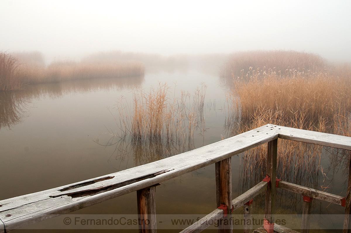 23- - Agua - Fotografia Natural, fotografia de paisajes