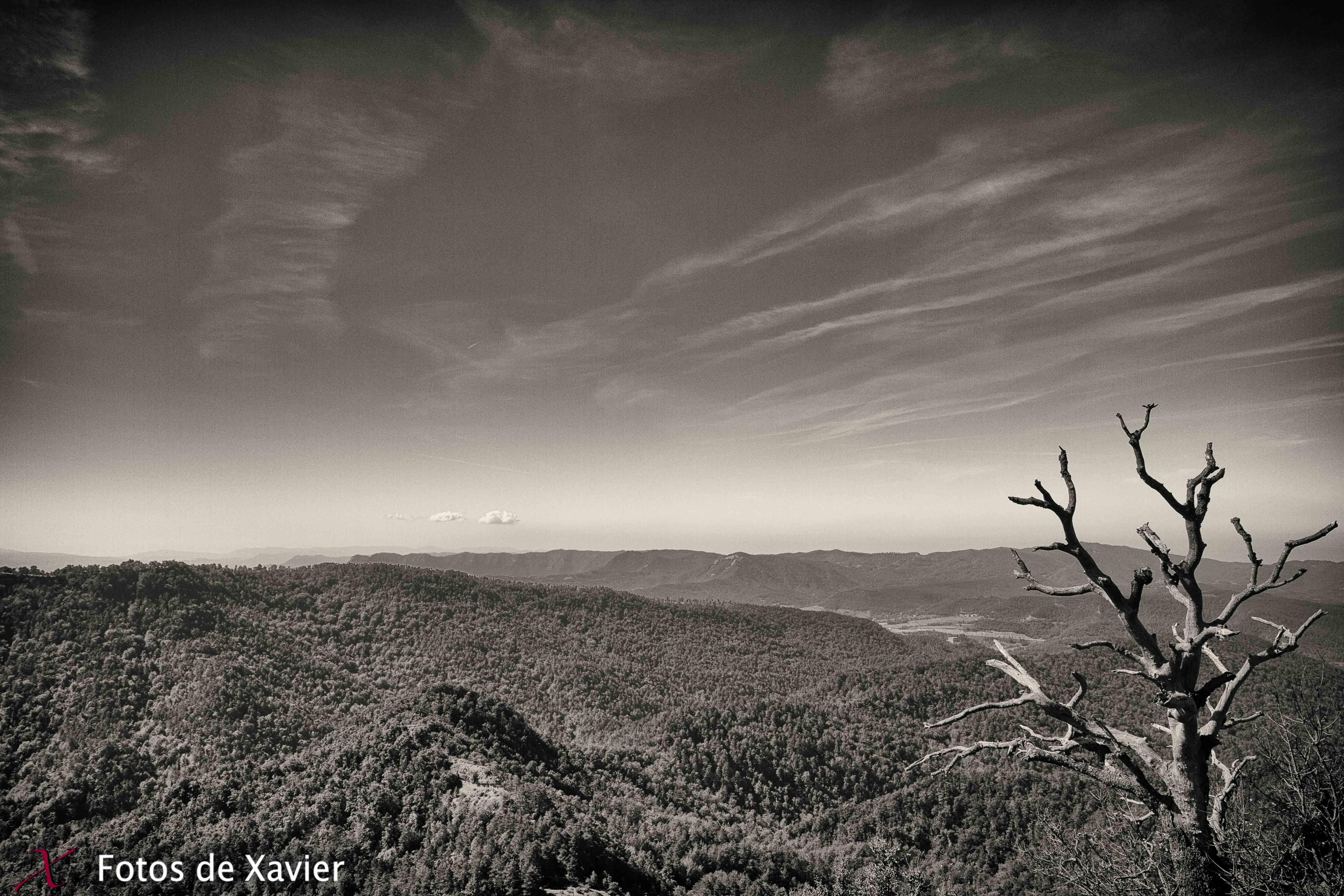 Horizontes - Blanco y negro - Fotos de Xavier. Fotografia de naturaleza y paisaje en blanco y negro. Xavier Linares