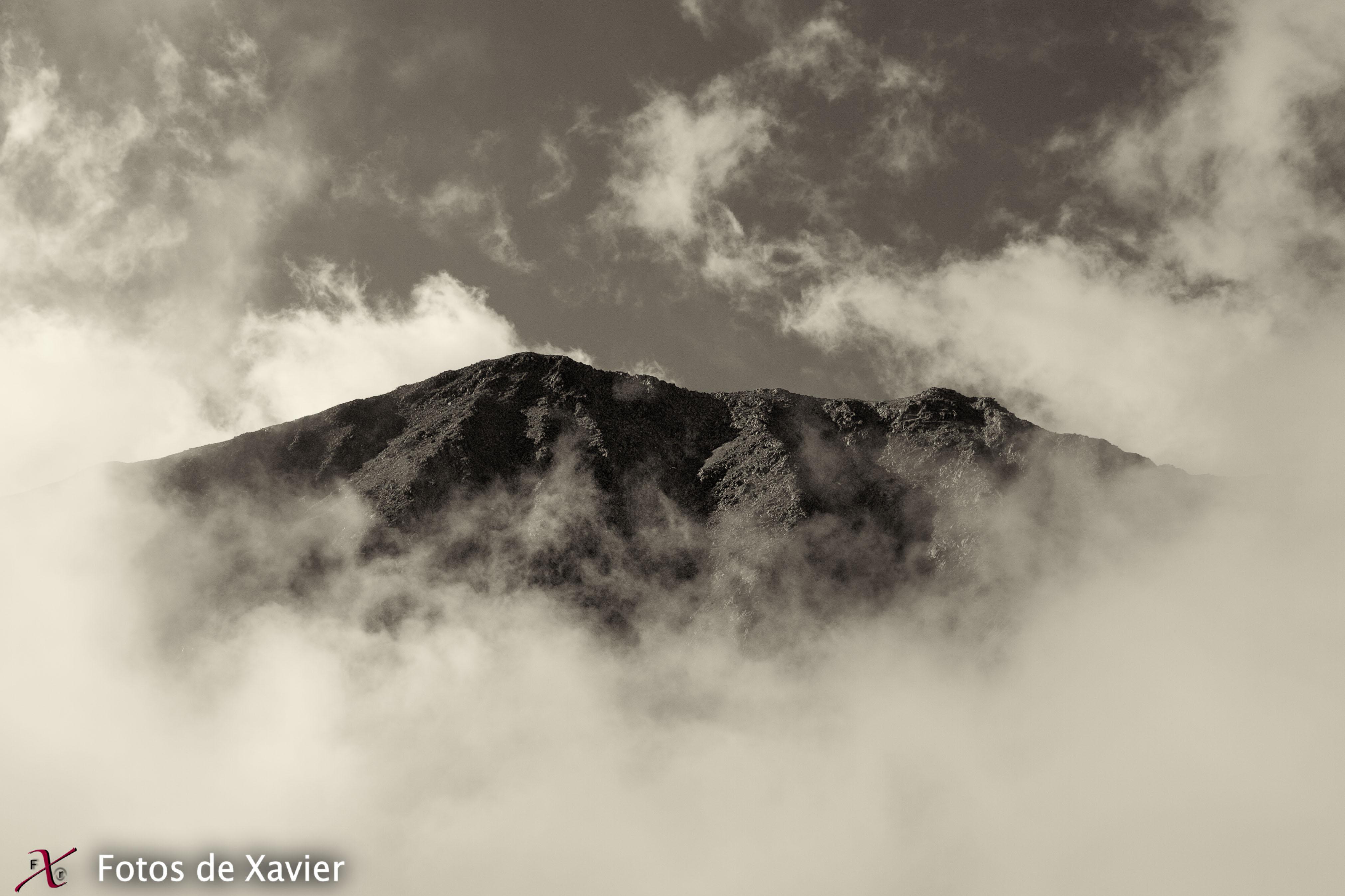 Entre algodones - Blanco y negro - Fotos de Xavier. Fotografia de naturaleza y paisaje en blanco y negro. Xavier Linares