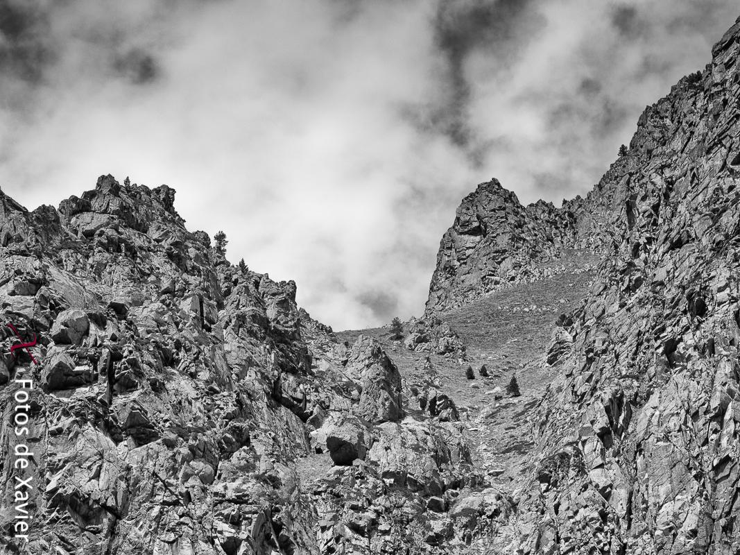 Blanco y negro - Fotos de Xavier. Fotografia de naturaleza y paisaje en blanco y negro. Xavier Linares