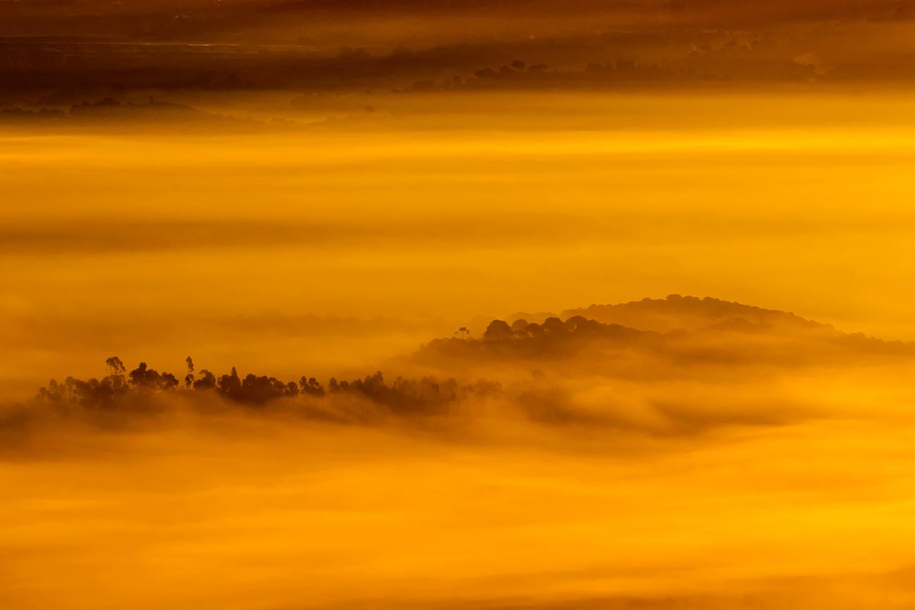 20170129 S. Huelva - 086 - Paisaje - Francisco Romero, Wild Photography