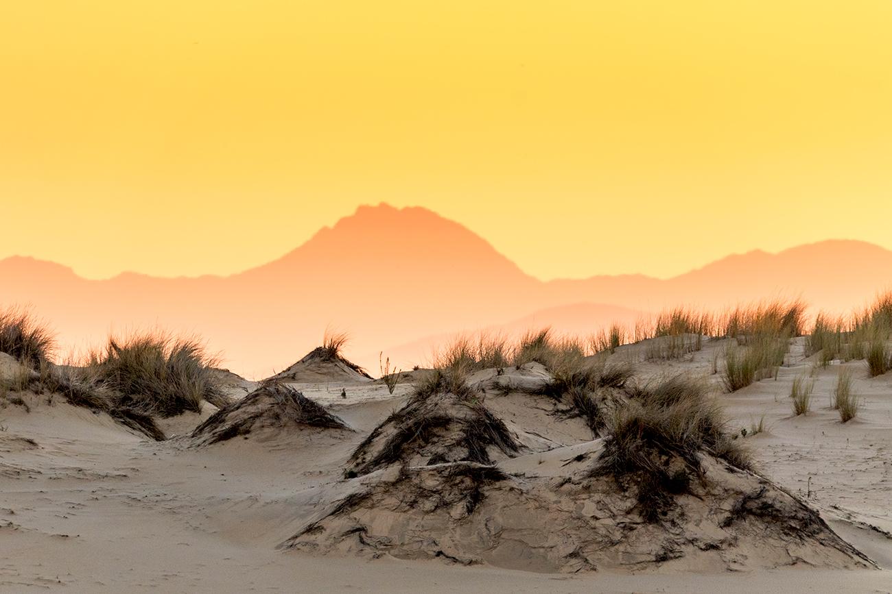 20171217 Doñana -127 - Paisaje - Francisco Romero, Wild Photography