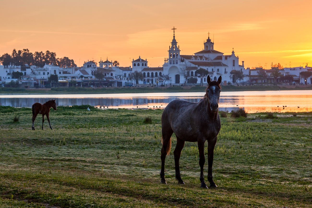 20160403 Doñana - 009 - Cultura Marismeña - Francisco Romero, Wild Photography