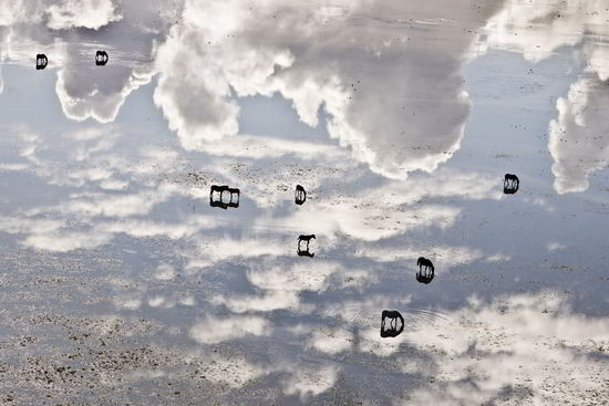 Horses in the sky - Volaverunt - Hector Garrido, Aerial and human photography