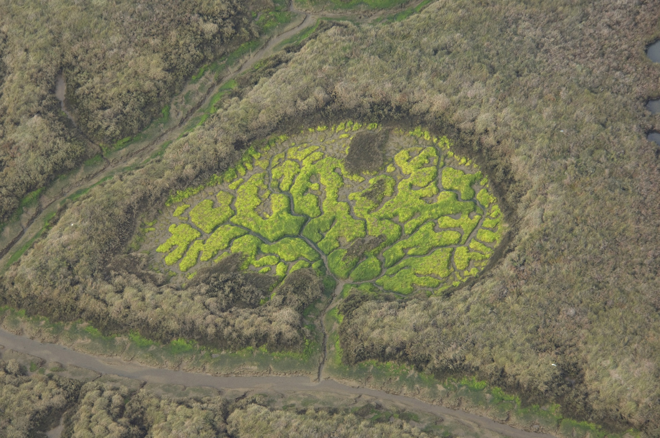 Aerial nature - Hector Garrido, Aerial and human photography