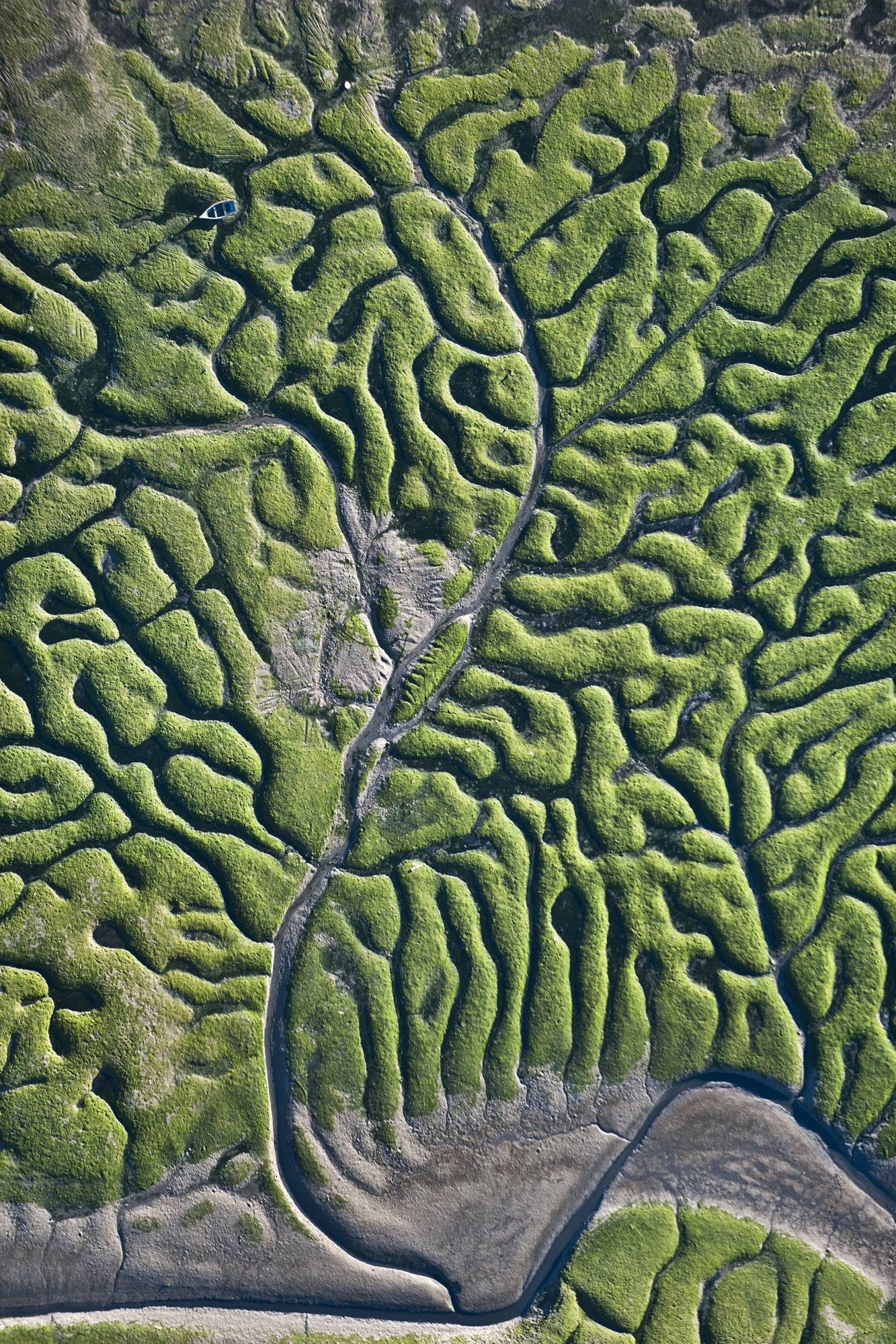 Fractals - Hector Garrido, Aerial and human photography