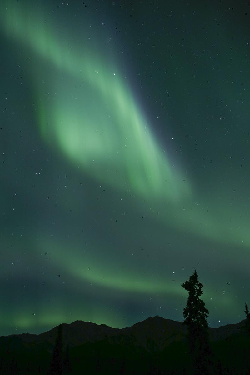 Denali, Alaska - Alaska - Iñigo Bernedo, Fotografía