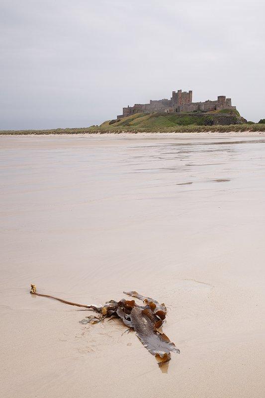 Banburgh Castle - Escocia - Iñigo Bernedo, Fotografía