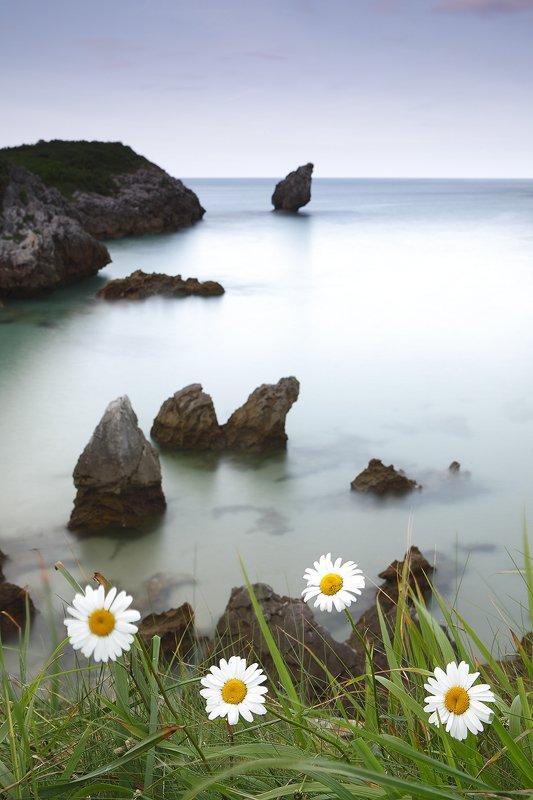 Buelna, Asturias - Costa - Iñigo Bernedo, Fotografía