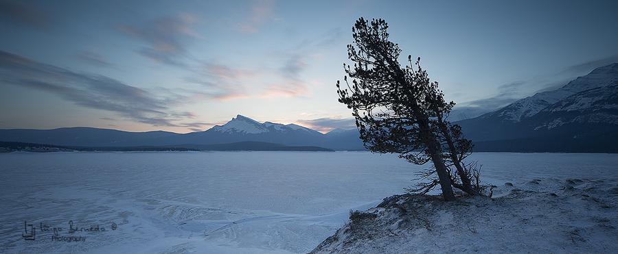 Canada, Abraham Lake - Iñigo Bernedo, Fotografía