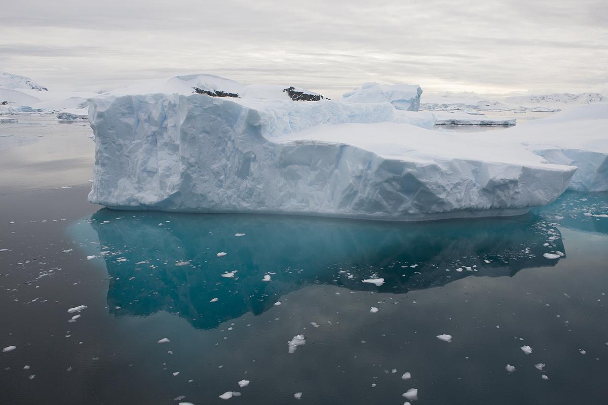 Orne Harbour - Antártida - Iñigo Bernedo, Fotografía