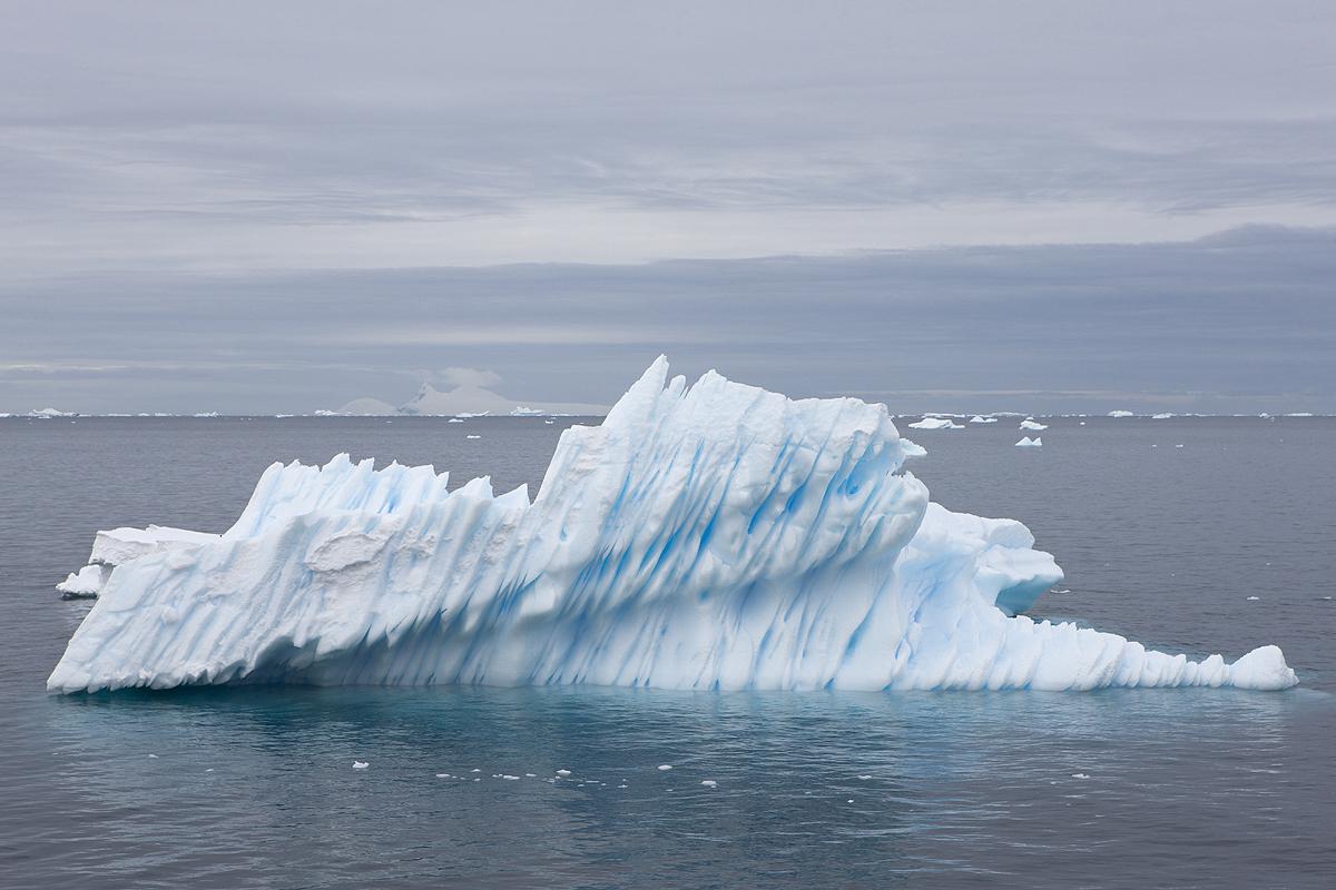 Paradise Harbour - Antártida - Iñigo Bernedo, Fotografía