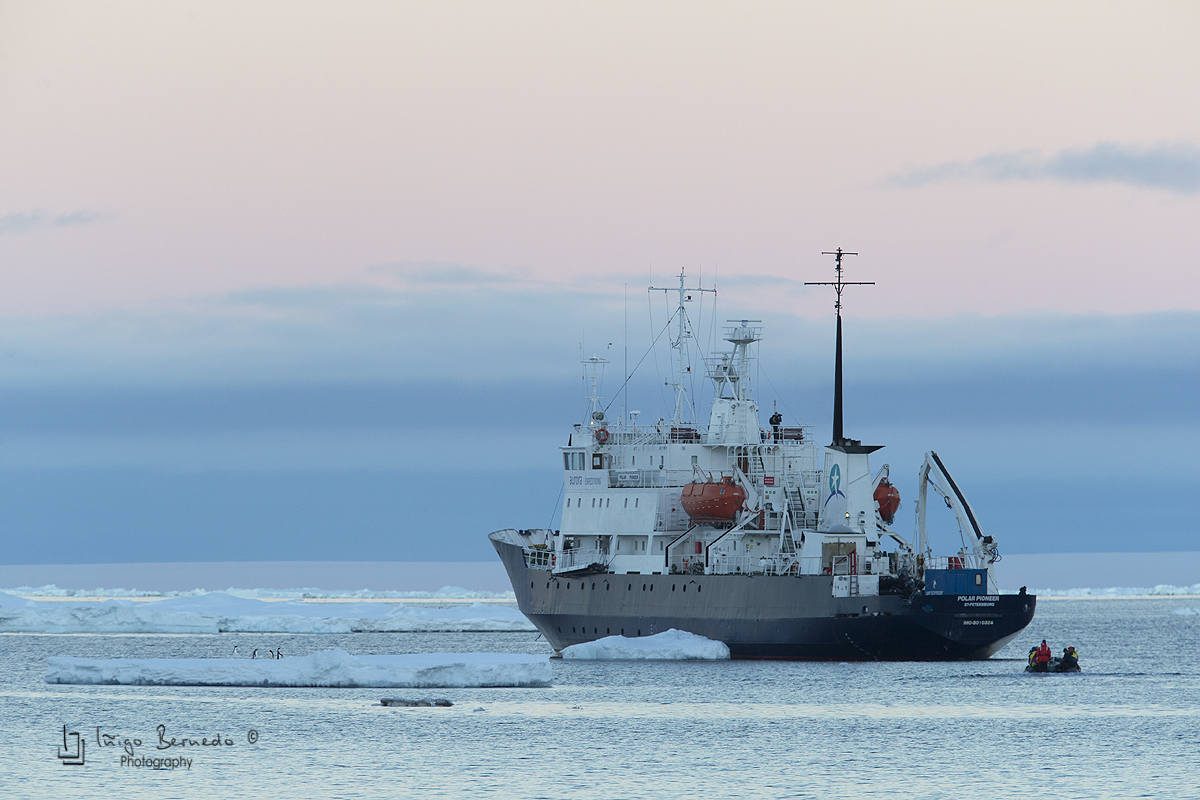 Polar Pionner, Brown Bluff - Antártida - Iñigo Bernedo, Fotografía