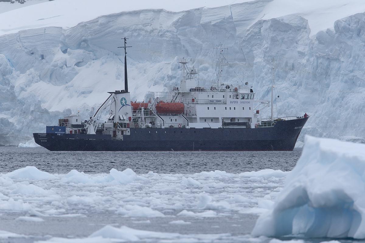 Polar Pioner, Neko Harbour - Antártida - Iñigo Bernedo, Fotografía