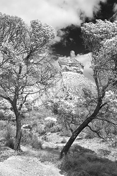 BARDEAK - Natura - Iosu Garai, Argazkilaria - Fotógrafo