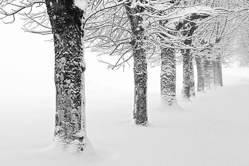 URBIA - Mendía-Montaña - Iosu Garai, Argazkilaria - Fotógrafo