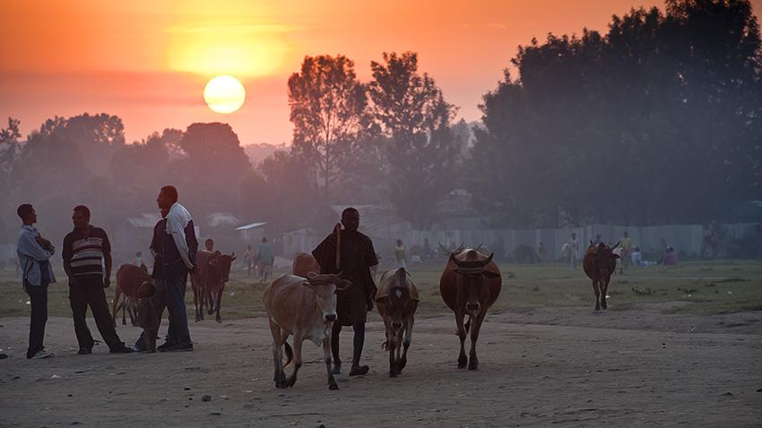 Etiopia - Bidaiak-Viajes - Iosu Garai, Argazkilaria - Fotógrafo