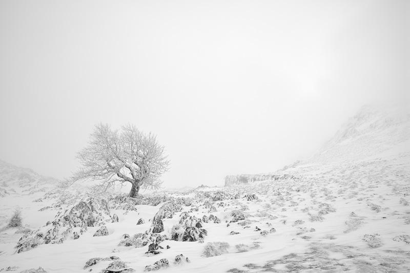 ARATZ - Mendía-Montaña - Iosu Garai, Argazkilaria - Fotógrafo