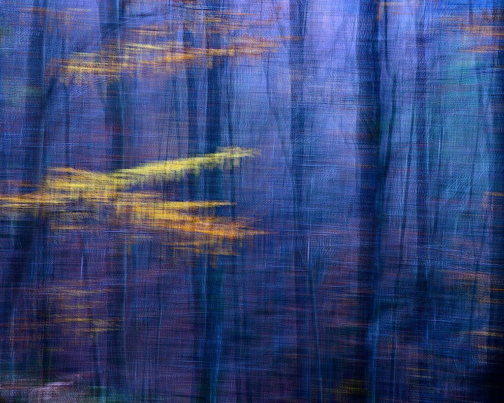 Inpresionismoa - Impresionismo - Iosu Garai, Argazkilaria - Fotógrafo