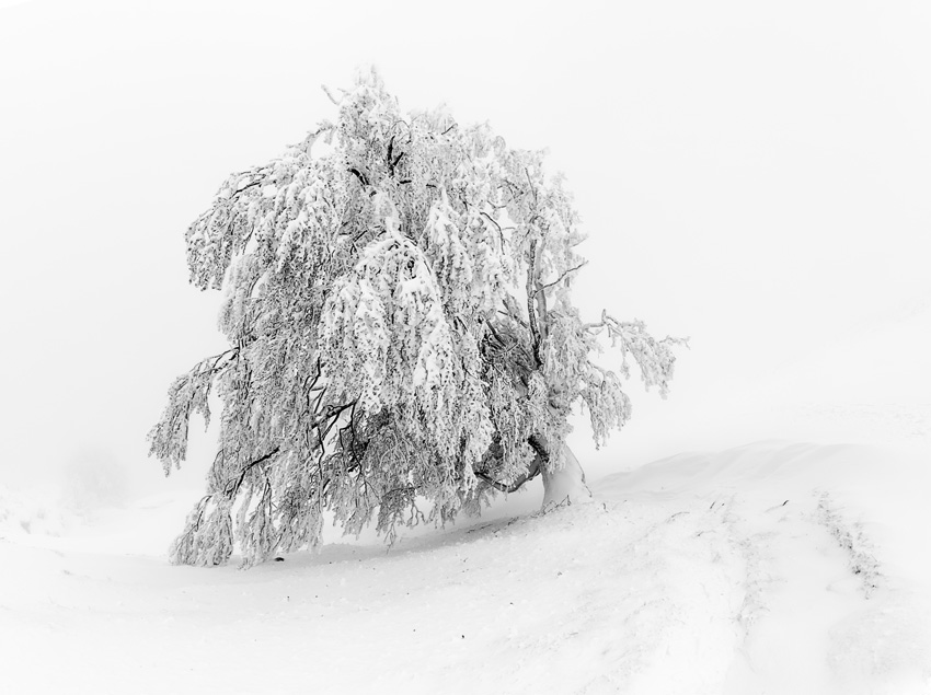 AKETEGI - Mendía-Montaña - Iosu Garai, Argazkilaria - Fotógrafo