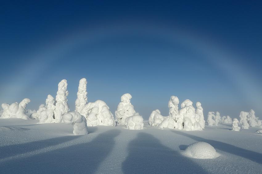 Arco de niebla, Riisitunturi, Finlandia, Febrero 2013. - La taiga - Isabel Díez . Bosque Boreal . Finlandia